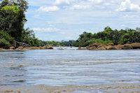 Bild 6: Ein Arm des Río Ventuari kurz vor dem Zusammenfluss mit dem Río Orinoco: Habitat von Micracanthicus vandragti/Hypancistrus vandragti
