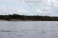 Bild 10: am Rio Atabapo (Kolumbien)