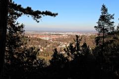 Alteburg - Königstuhl - Blick auf Arnstadt