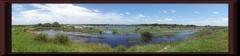 Im Río Paraná-Delta