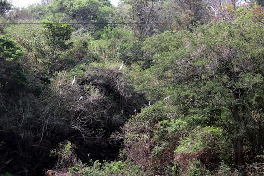 bolivien-04306.jpg