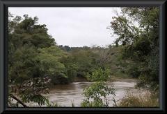 Noch friedlich - der Rio Iguazu