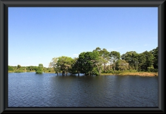 Am Lago Janauacá