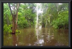 Nur bei Hochwasser befahrbar