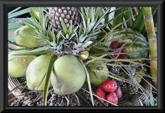 Vortrag Früchte Amazoniens