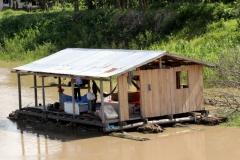 Am Rio Carapanatuba