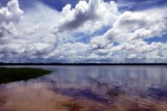 Am Anfang des Rio Carapanatuba
