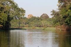 Lago Janauaca
