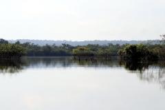 Igarapé Tucumã