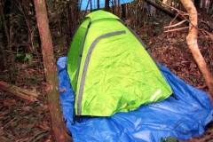 Zelten im Dschungel