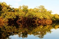 Igarapé Cachoeira