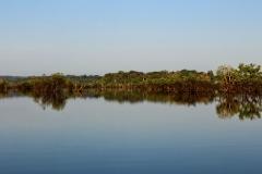Rio Cuieiras