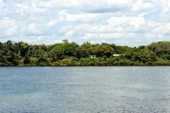 Blick vom Rio Negro auf Airão