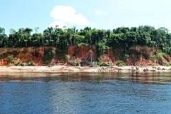 Zurück nach Manaus