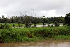 Am Rio Panapuã