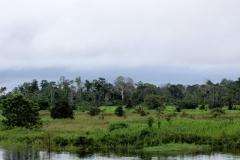 Rio Tonantins