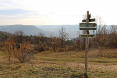Jena Windknollen - Blick zum Saaletal