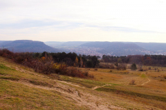 Jena Windknollen - Napoleonstein - Blick nach Jena