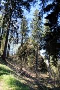 Großer Hermannstein