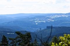 langenberg-20170716_19