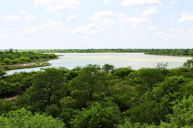paraguay-03122.jpg