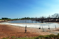 Salzsee im Gran Chaco