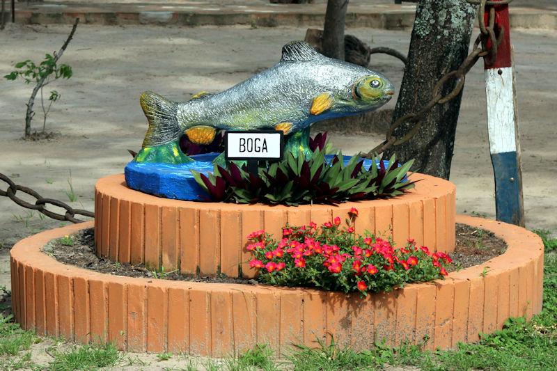 paraguay-12121.jpg