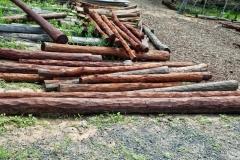 Balsa-Holz