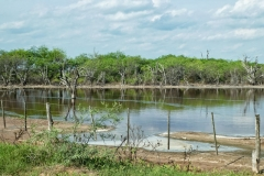 Salzsee in Gran Chaco
