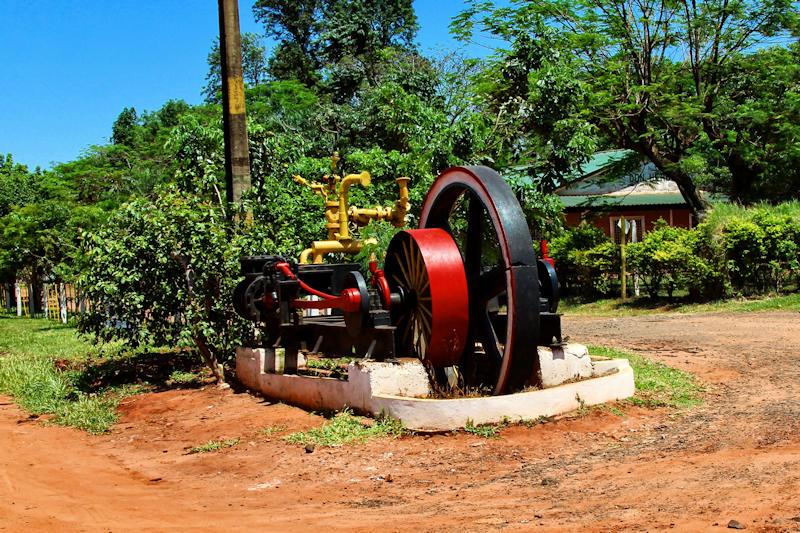 paraguay-07302.jpg