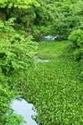 río Tagatiyami
