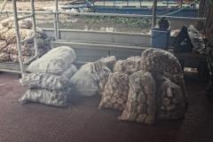 Brot und Brötchen aus Vallemi für Puerto Casado
