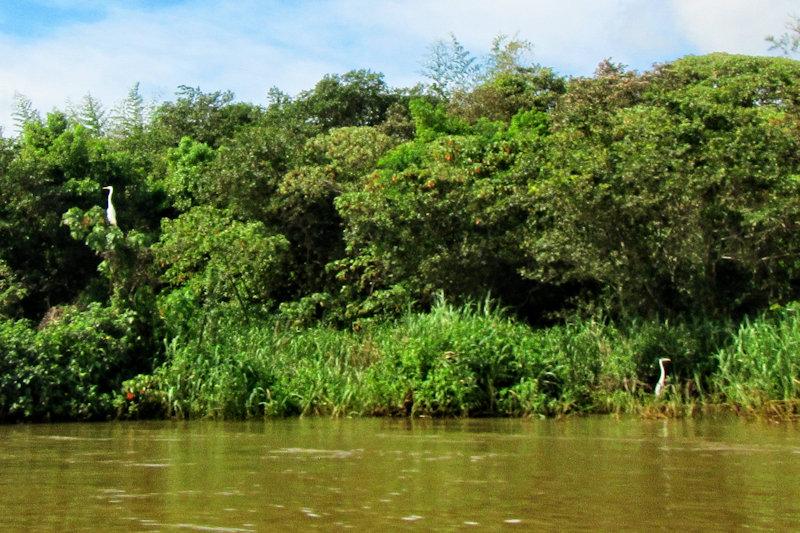 paraguay-14104.jpg