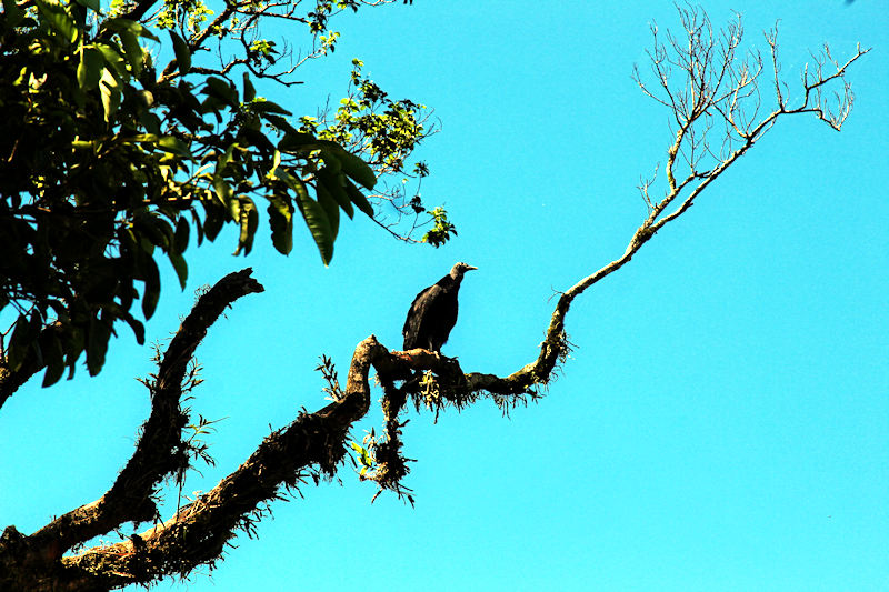 paraguay-08117.jpg