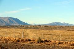 Blick auf Torres del Paine-Massiv