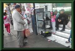 Trujillo - vor der Markthalle