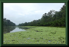 Lagune nahe Saquena