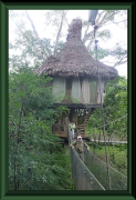 Tree-House-Lodge