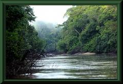 Rio Yarapa