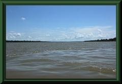 Amazonas voraus