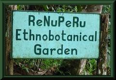 Botanischer Garten an der ExplorNapo Lodge