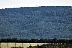 Blick über Nordhausen zum Poppenbergturm