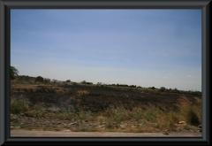 Auffälliger Weise gab es immer wieder abgebrannte Flächen.