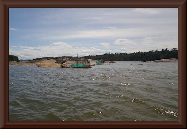 Bei den Zierfischfängern am Río Ventuari