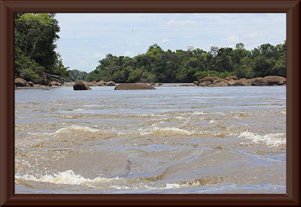 Río Orinoco an der Río Ventuari-Mündung