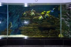 leipzig-zoo-ringaquarium-08