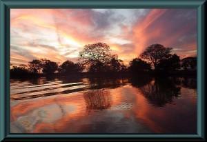 Pantanal – Rio Claro