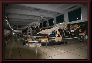 Buenos Aires - Naturkundemuseum