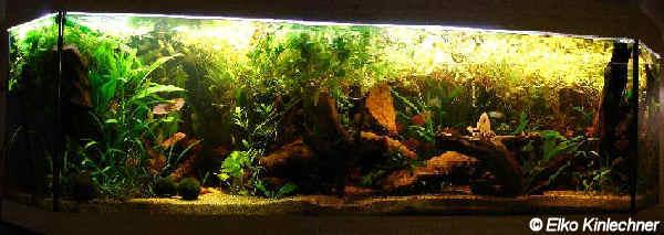Aquarium 700L
