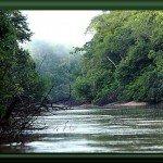 Río Yarapa